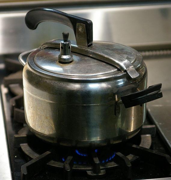 tajine aux pruneaux en auto cuiseur recettes de cuisine. Black Bedroom Furniture Sets. Home Design Ideas