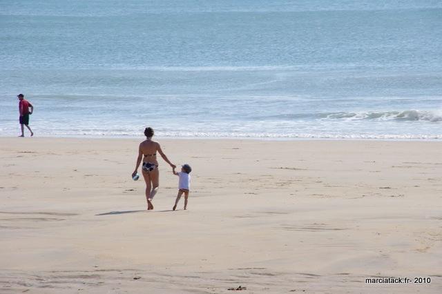 Vendée : marais poitevin & endroits insolites