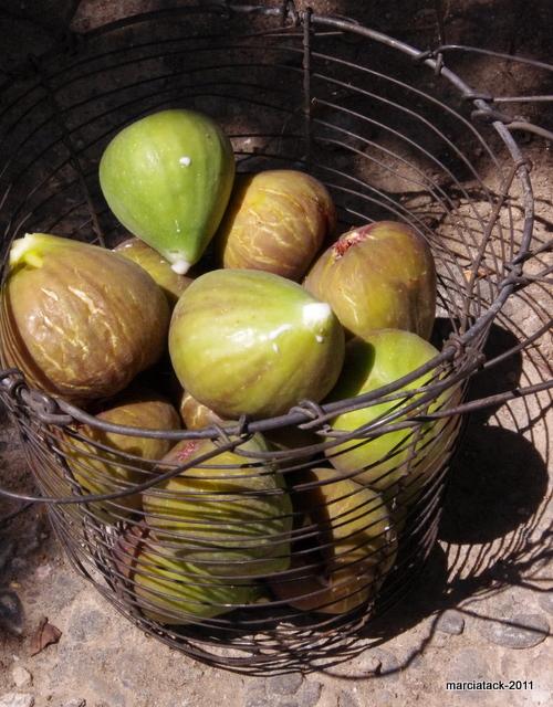 Panier de figues