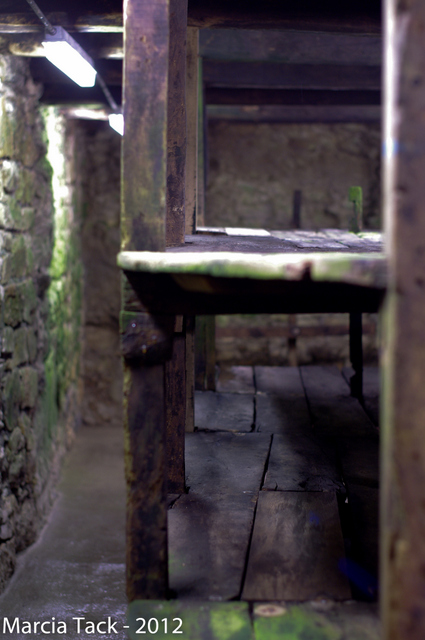 Aveyron : visite des caves Roquefort