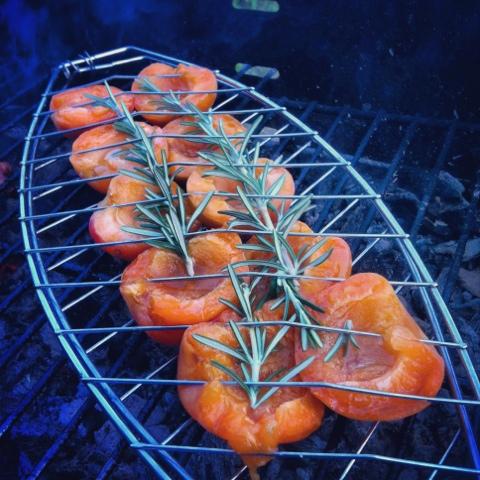 abricots-rotis-barbecue-romarin
