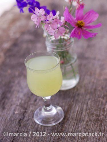 jus-concombre-citron-menthe