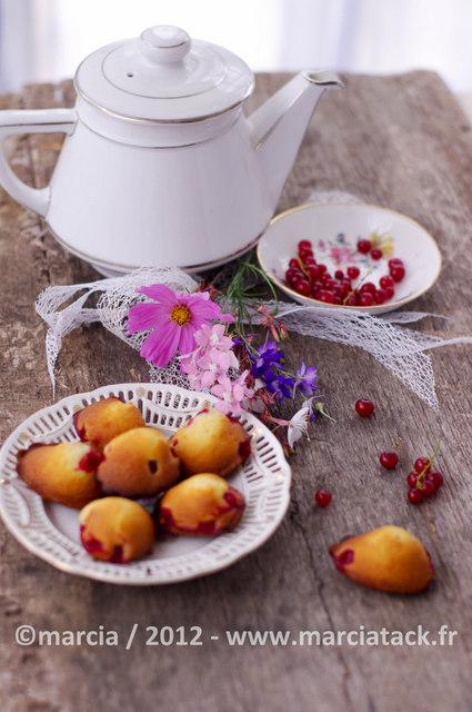 madeleines aux groseilles