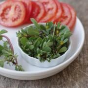 Recette de salade de pourpier