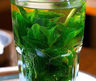 Recette de thé glacé à la menthe