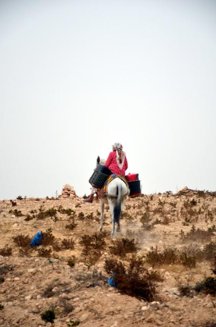 Sur la route d'Essaouira