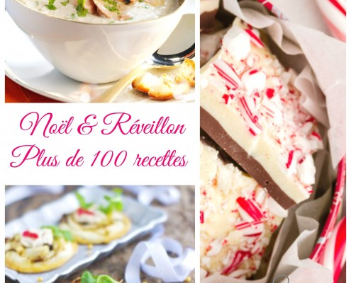 Plus de 100 recettes de Noël