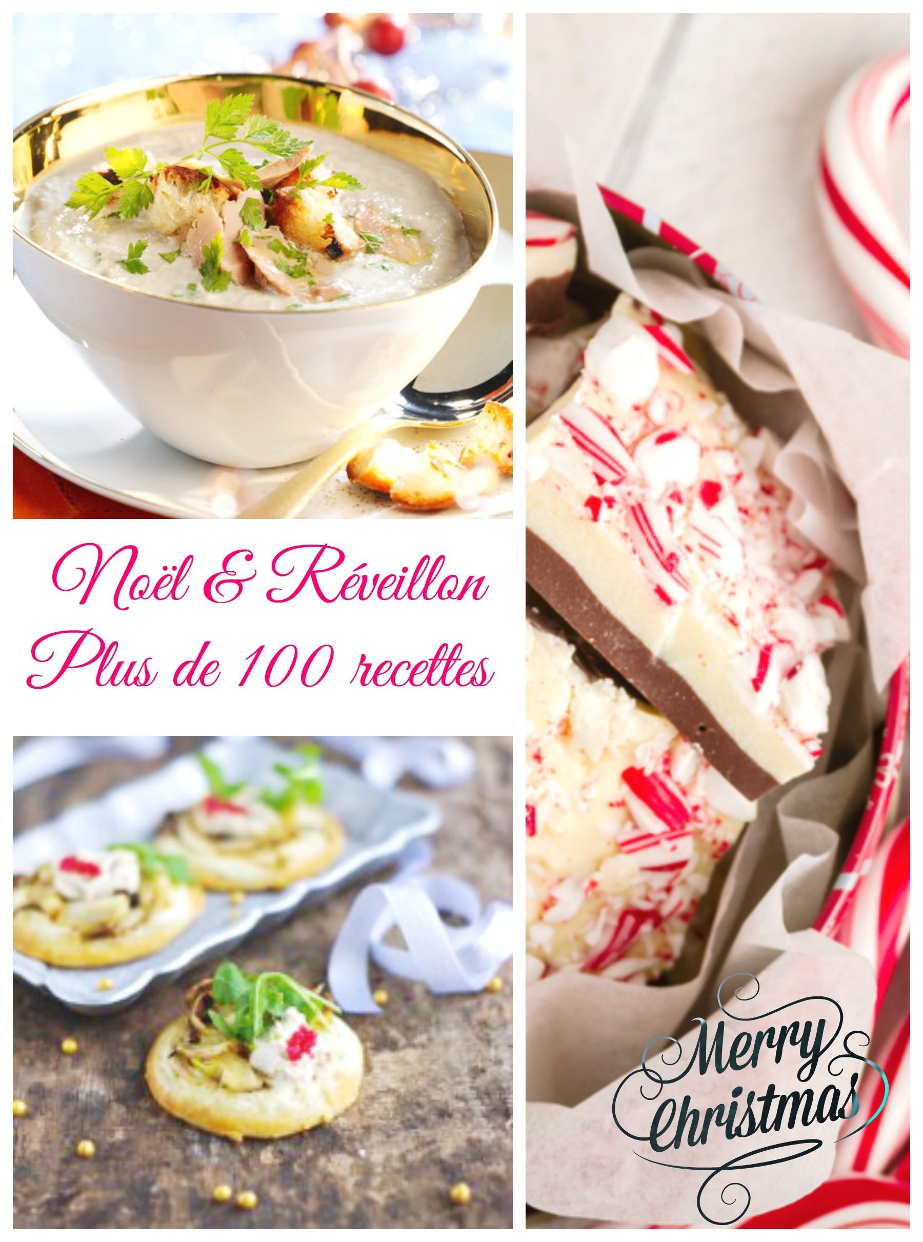 Idées recettes pour menus de Noël et nouvel an 2015