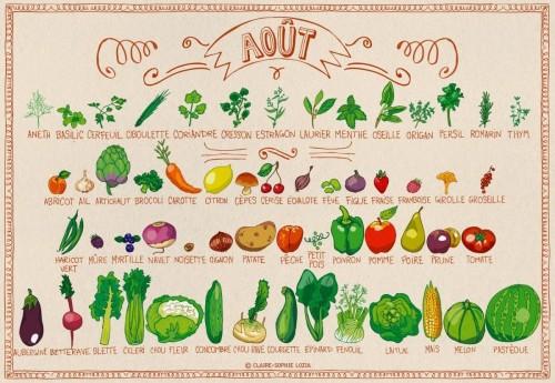 fruits et légumes d'aout