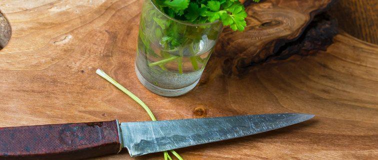 Conserver et cuisiner le persil frais fiche technique - Cuisiner les brocolis frais ...