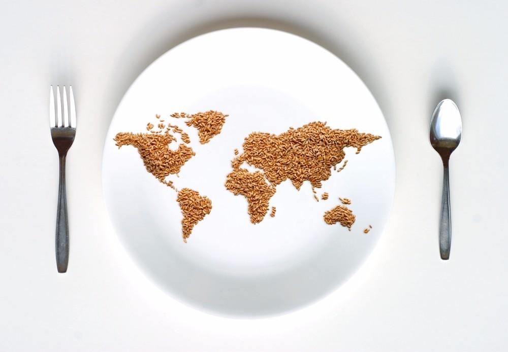 Journ e mondiale contre la faim info marciatack - Que faire contre les moucherons dans la cuisine ...
