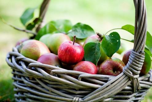 recettes de pommes