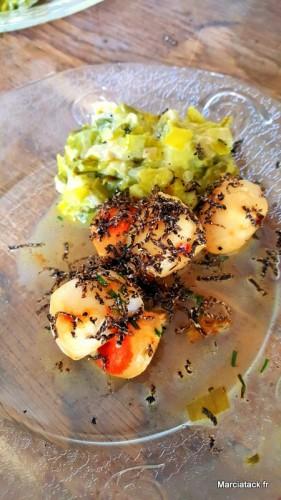 Saint Jacques et fondue de poireaux aux truffes