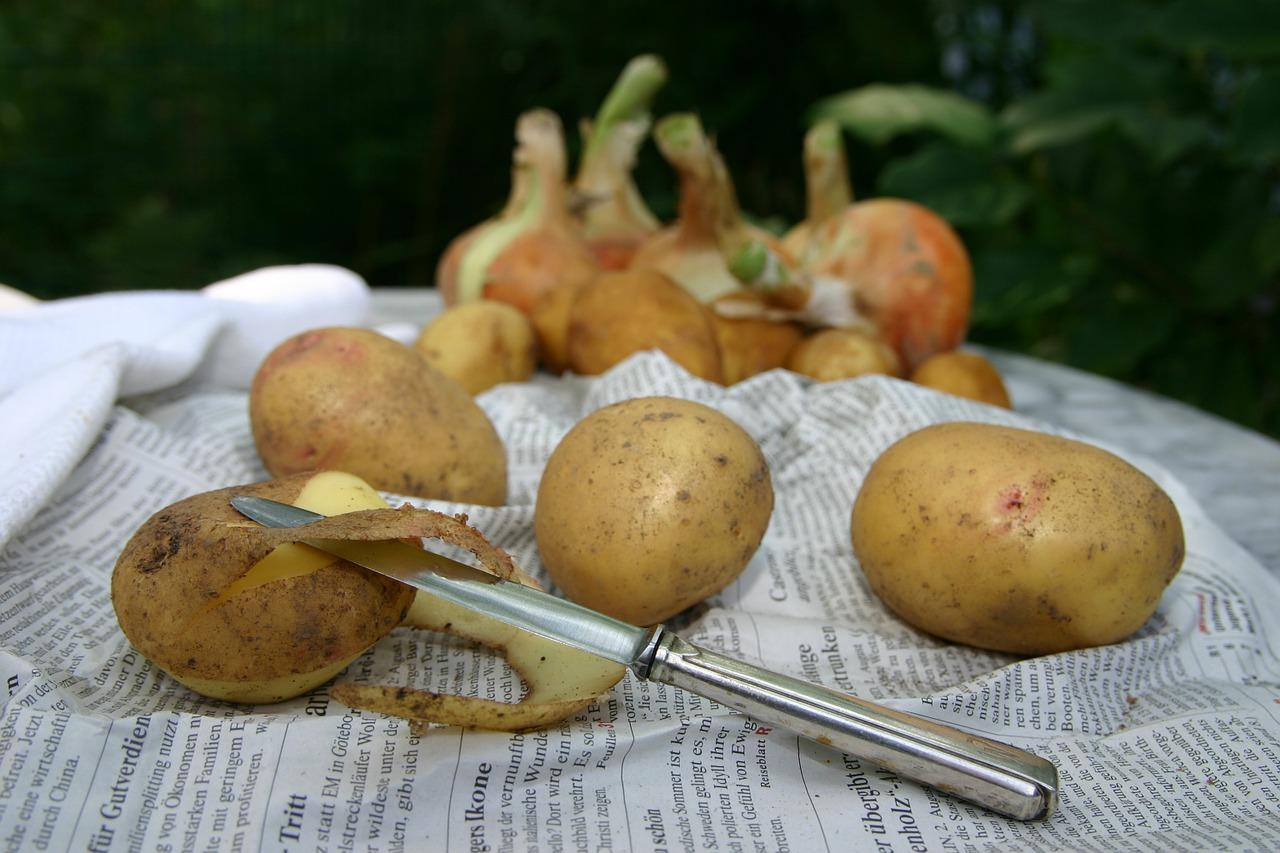 des pommes de terre épluchées sur un journal