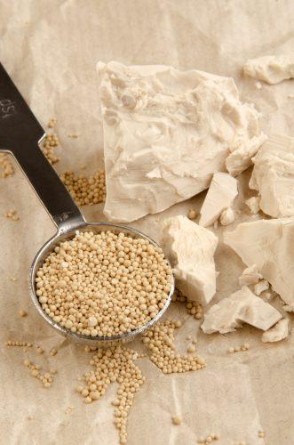 equivalence levure fraîche et levure sèche de boulanger