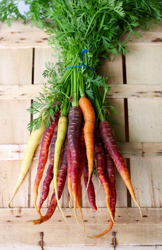 Recettes à préparer avec des carottes