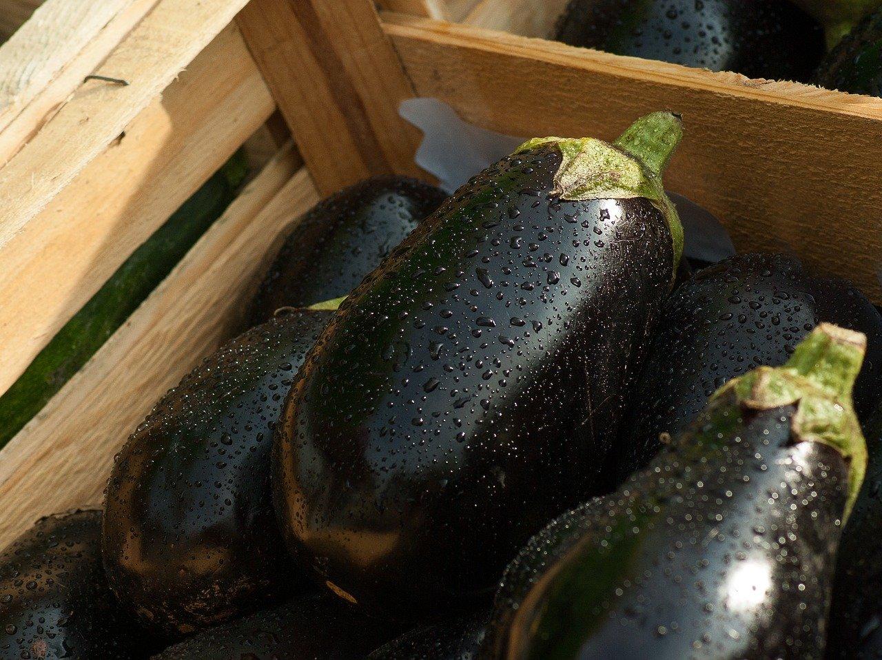 idées pour cuisiner l'aubergine